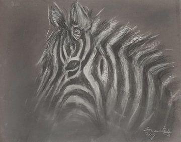Afrikanisches Zebra von Ineke de Rijk