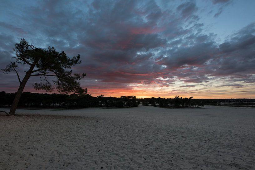 Zonsondergang in de duinen van Paul Oosterlaak