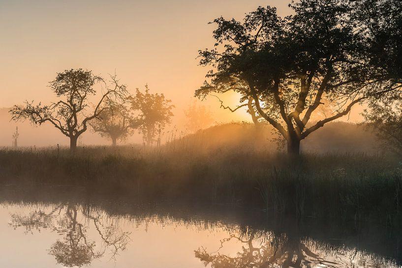 Gouden licht tijdens een magische ochtend op het Werk aan de Groeneweg 3 van Jeroen de Jongh