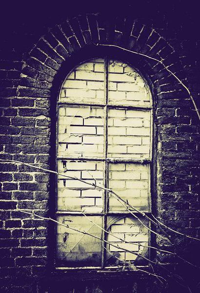 Broken Window van Tonny Visser-Vink
