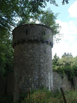 torentje van David Van der Cruyssen
