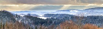 Bayrischer Wald von Dirk Rüter