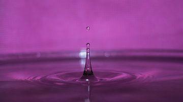Liquid van Tomas S.