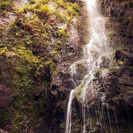 Am Fuße des Burgbachwasserfalls von Severin Frank