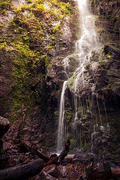 Am Fuße des Burgbachwasserfalls von Severin Frank Fotografie