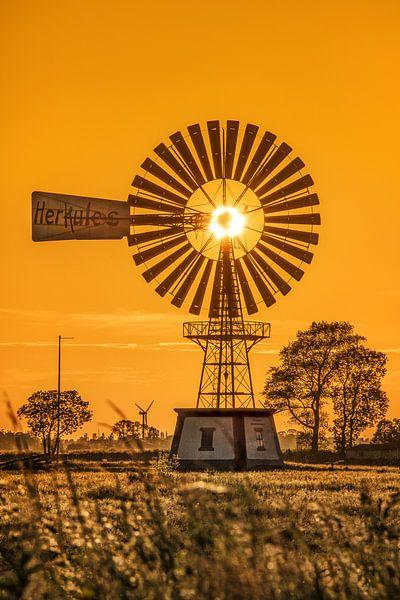 Windmolen de Herkules tijdens zonsondergang van Harrie Muis