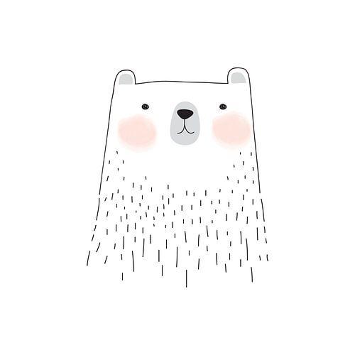 Illustration eines Bären von STUDIO 68