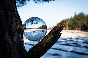 winter door een glazen bol