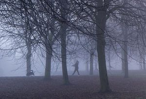 Met de hond de mist in