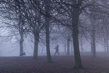 Met de hond de mist in van