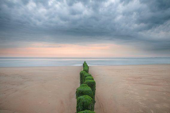 Palen naar de zee
