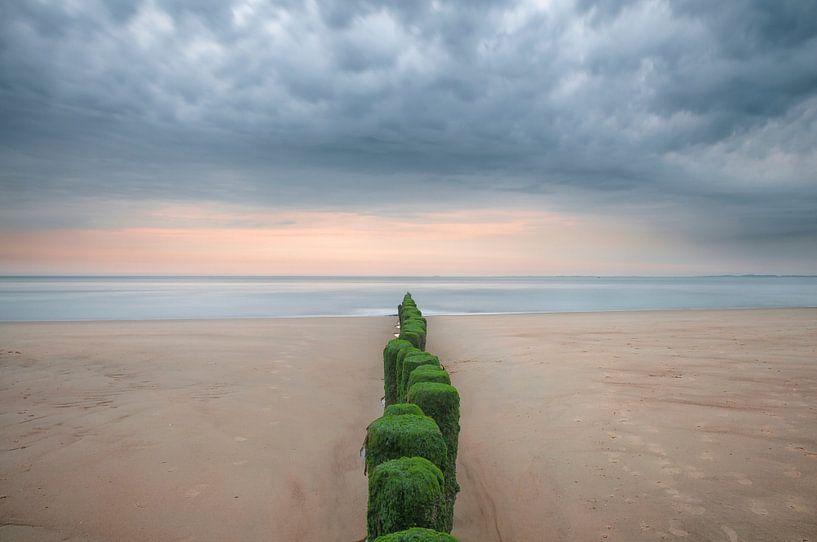 Palen naar de zee van Peter Bijsterveld