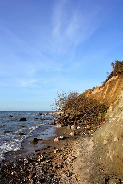 An der Steilküste von Ostsee Bilder