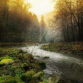 Kronkelende rivier door mistige ochted van Gabsor Fotografie