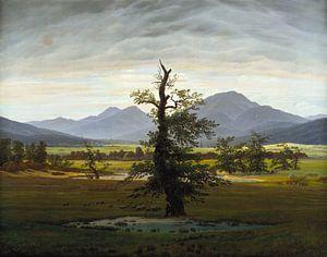 Caspar David Friedrich - De eenzame boom van