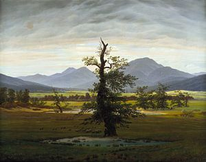 Caspar David Friedrich - De eenzame boom