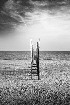 Meereslandschaften 2.0 II von Steven Goovaerts