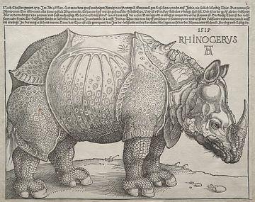 De neushoorn, Albrecht Dürer van De Canon