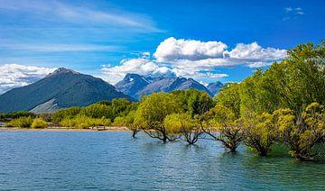Natte voeten, Lake Hayes, Nieuw Zeeland van Rietje Bulthuis