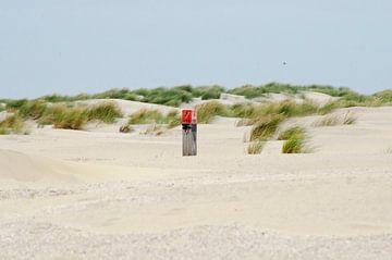 Paaltje op Ballum strand Ameland van