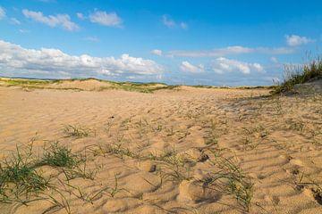Dünen am Strand von Conil de la Frontera von Gottfried Carls