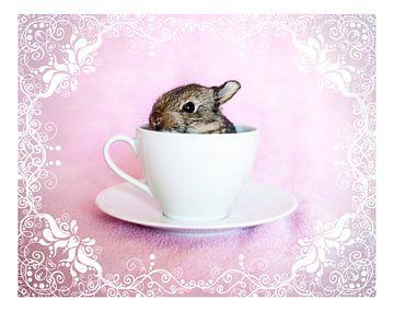 Pip in a Cup van Myrna Mangolita