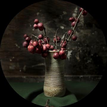 Appeltjes in aardewerken vaas   fine art stilleven fotografie in kleur   print muur kunst van Nicole Colijn
