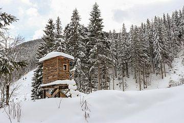 Hütte des Jägers von Marjolein Albregtse