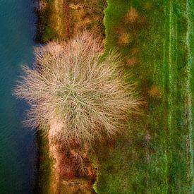 Leeg nest van Ruud Peters