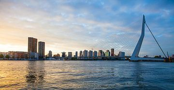 Rotterdam Erasmusbrug von Pieter Wolthoorn