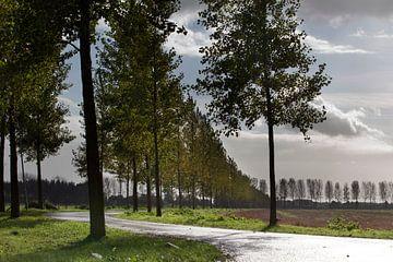 Landschap in Maas en Waal von Ger Loeffen