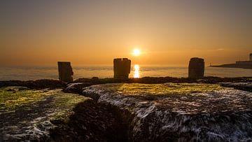 Paalhoofden bij zonsondergang van Rob Altena