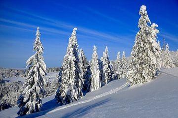 Feldberg met sneeuw van Patrick Lohmüller