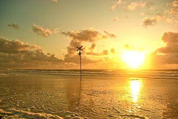 Sylt: Warnbake on the beach in front of Westerland (1) van Norbert Sülzner