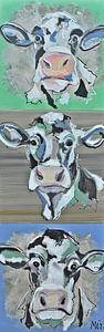Hollandse koeien Landelijk van