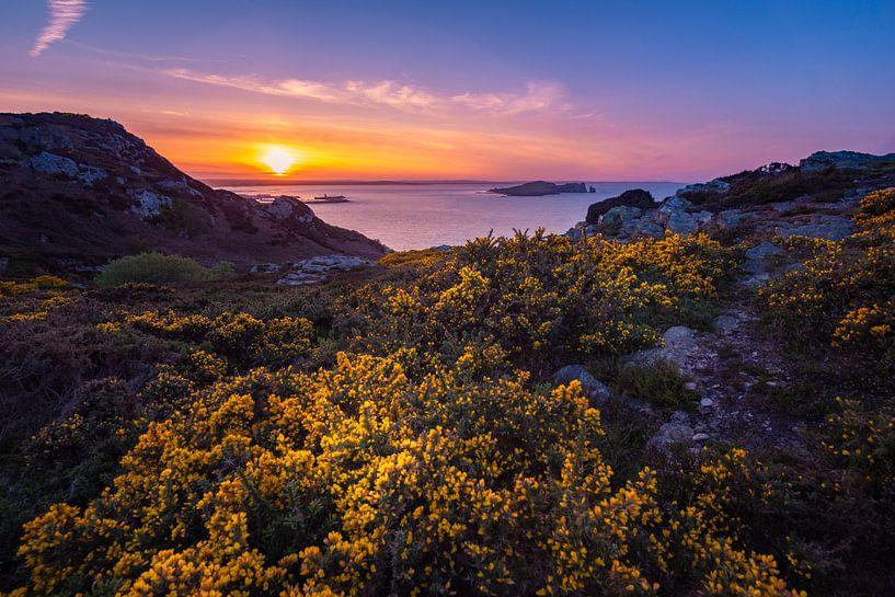 Zonsondergang in Dublin van Ronne Vinkx