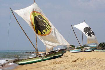 Vissersboten van Sri Lanka van Andrew Chang
