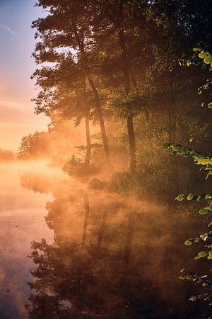 Gouden herfstmist van Florian Kunde