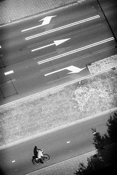 Follow the lines sur Pieter van Roijen