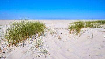 Der endlose Strand von Schiermonnikoog von Jenco van Zalk