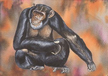 Schimpanse von Jasper de Ruiter