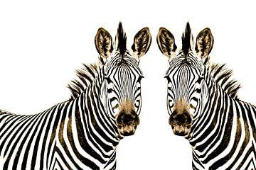 Zebra im Doppelpack thula-art von Barbara Fraatz