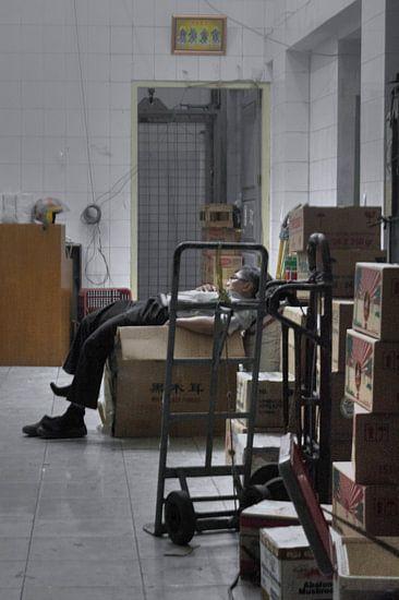 Sleepy van BL Photography