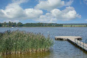 aan het grote Priepertmeer, Mecklenburg Lake District van Peter Eckert