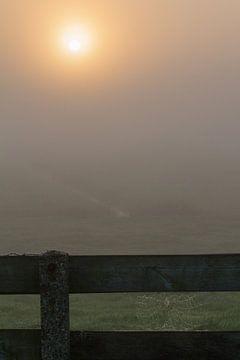zonsopkomst mist in de polder van Menno van Duijn