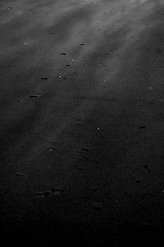 Dark van Sidney de Graaf