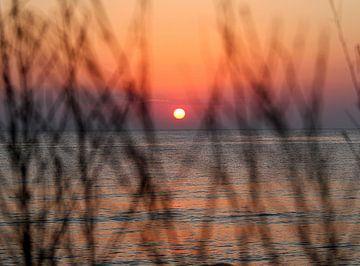 Sunrise sur Silvia van Zutphen