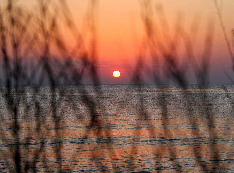 Sunrise van Silvia van Zutphen