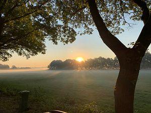 Lever de soleil du Brabant. sur Eric Reijbroek