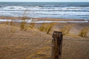 Hollandse kust van Annelies Martinot